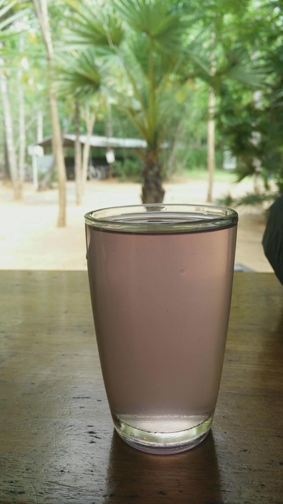 auroville juice aparajita